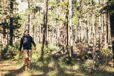 Hiker trekking on the trail in a forest. Man exploring nature walking through the woods. Stock fotó - 88101904