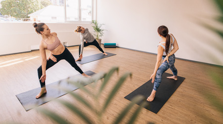 Three people practising yoga in class. Group of people standing on yoga mat stretching and twisting their body. Фото со стока