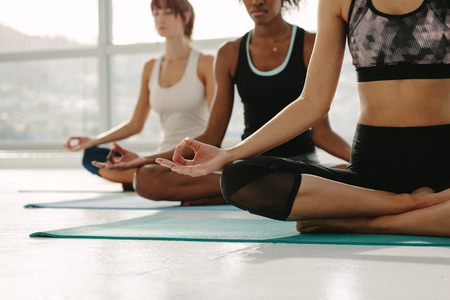 Female sitting on fitness mat with legs crossed and hands on knees in yoga pose. Group of women meditating in lotus pose at yoga class, Padmasana. Stock Photo