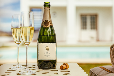 Two glasses of wine with bottle of sparkling wine on a table at the pool side