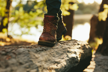 Close up of legs of a person walking on a log on wood in a forest. Cropped shot of a person wearing leather boots walking on a dead tree trunk.