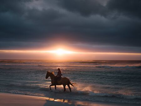 Silhouette of a female riding horse along the beach. Woman horse riding on the sea shore at sunset.