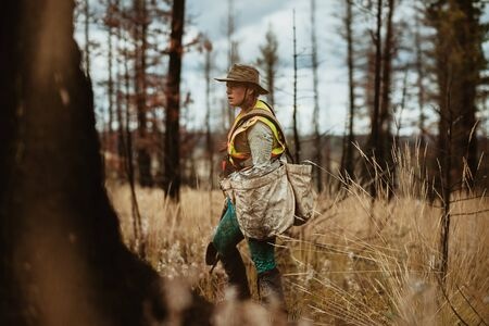 Female volunteer wearing reflective vest and hat working in forest. Woman tree planter working in forest. Stock Photo