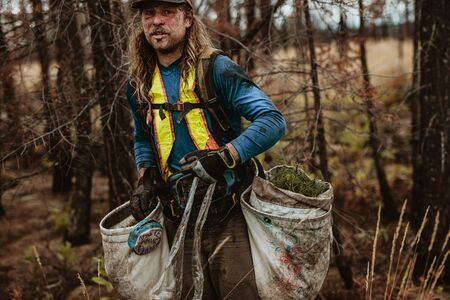 Tree planter in forest with bag full of pine seedlings. Man working in forest planting new trees.