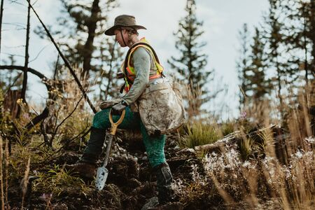 Forester walking through deforested land in forest carrying bag full of trees and a shovel. Woman working in forestry.