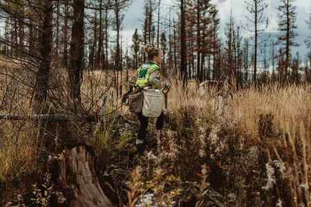 Female tree planter wearing reflective vest walking in forest carrying bag full of trees and a shovel. Woman working in forest planting new trees. 写真素材