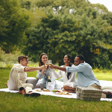Young people toasting champagne while on a picnic. Young group of friends sitting at park and having champagne. Banque d'images