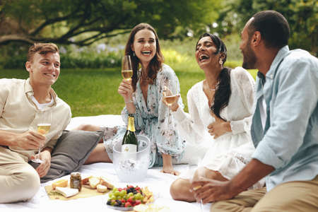 Group of friends having a great time on picnic at the park. Happy young people sitting at the park talking and smiling with champagne glasses in hand. Banque d'images