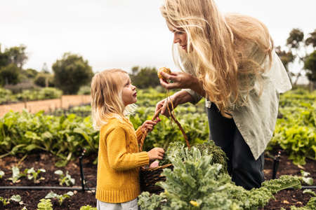 Mom showing her daughter a fresh onion in an organic garden. Young single mother gathering fresh vegetables with her daughter during harvest season. Self-sustainable family reaping fresh produce.