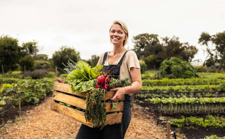 Happy female farmer holding a box with fresh produce. Young female organic farmer smiling cheerfully after harvesting fresh vegetables from her garden. Successful female farmer standing on her farm.