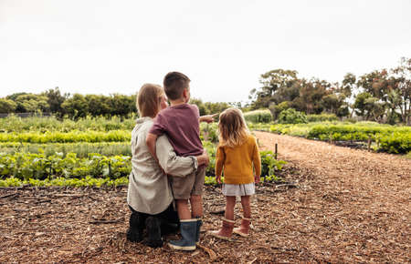 We're going to harvest over there soon. Single mother pointing towards fresh green crops on an agricultural field while talking to her kids. Rearview of a young self-sustainable family on an organic farm.