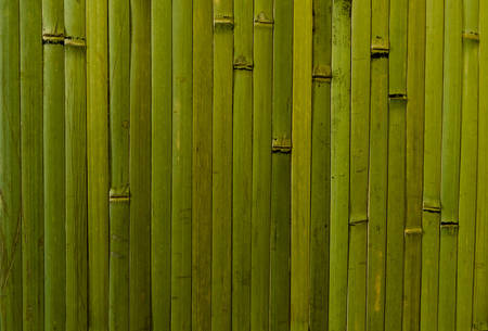 wall covering: Bamboo wall covering. green vertical forms