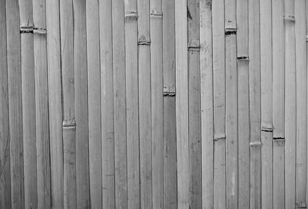 wall covering: Bamboo wall covering. Black and white trunks that are very close to each other