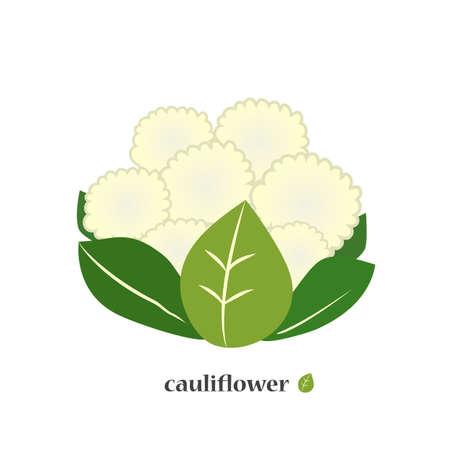 Cauliflower. Cabbage icon closeup. Illustration