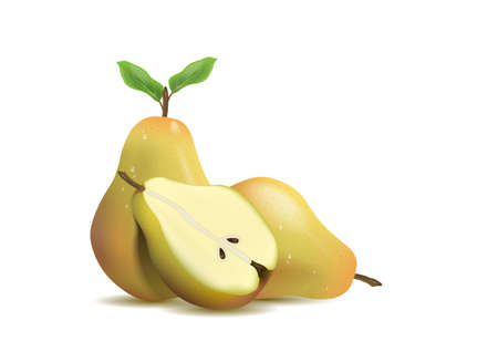 Realistic illustration pear isolated on white background