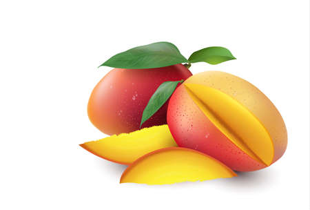 Mango. Whole and pieces. 3D vector set illustration. 向量圖像
