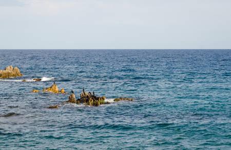 Mediterranean sea, the coastline of Blanes, Spain, Costa Brava 版權商用圖片