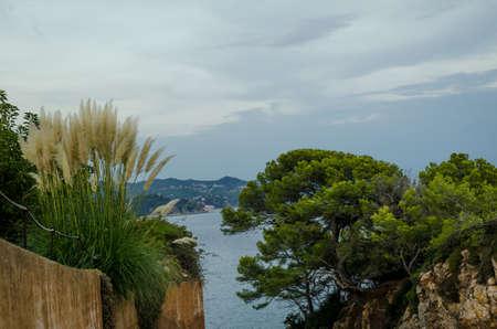 Scenic views of Cala de Sant Francesc, Blanes Bay coastline, Costa Brava, Spain, Catalonia