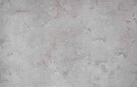 Smooth stone texture is gray-beige with cracks, spots.