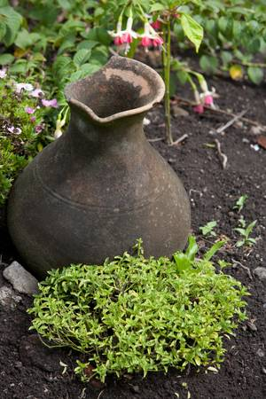 clay pot used as design detail in a colorful garden photo