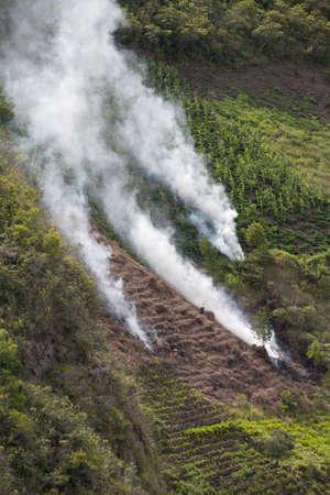 Escena de la agricultura en la Sierra ecuatoriana Foto de archivo - 9112193