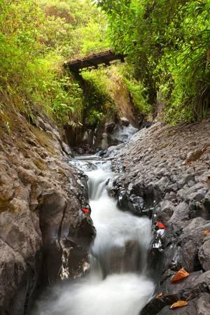 volcano slope: Small river on Tungurahua volcano slope