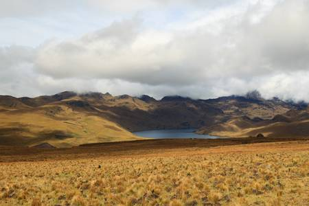 crater highlands: Ozogoche lagoon in national park Sangay in Ecuador,very famous place because of the birds that come to commit suicide by throwing themselves in the water.