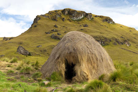 thatched house: Simple straw shelter used by shepherds in Andes mountains at very high altitudes Stock Photo