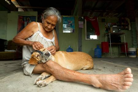 south coast: PLayas,Ecuador - January 2, 2011: Woman living in poor conditions is taking care about shes pet Editorial