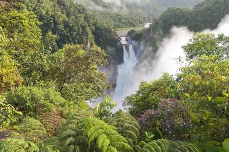 rio amazonas: San Rafael Falls, la cascada m�s grande de Ecuador Foto de archivo