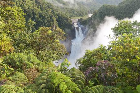 rivers mountains: San Rafael Falls, The largest waterfall in Ecuador Stock Photo