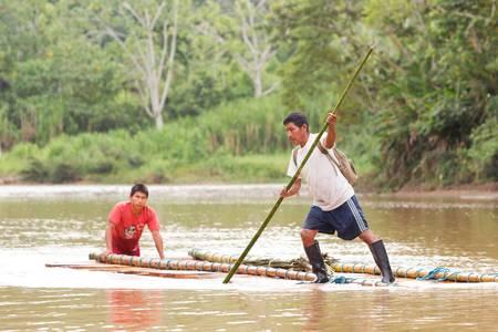 amazonia: Puni Bocana,Ecuador - November 16,2012: Group of two adult mans transporting hardwood mahagony timber to the local market in Puni Bocana, Ecuadorian Amazonia on the Napo river