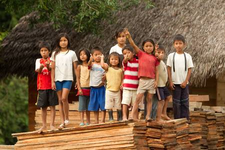 arme kinder: Puni Bocana, Ecuador - November 16,2012: Group of ocal Kinder sammelt zu grüßen die Touristen in ihrem Dorf, Puni Bocana, ecuadorianischen Amazonasgebiet Editorial