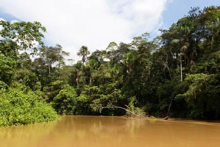 ecotourism: yasuni national park , ecuador