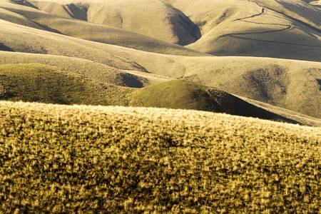 stock vista: high altitude landscape, ecuadorian andes, aprox 4600m altitude. Stock Photo