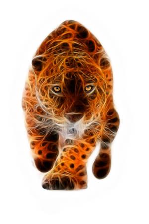 jaguar: Gran jaguar macho de realizar un ataque, con su traight mirada feroz en sus ojos aislados en blanco Foto de archivo