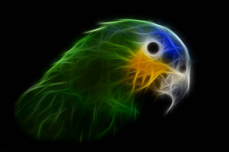cm: the blue-headed parrot, also known as the blue-headed pionus, pionus menstruus, is a medium large parrot. it is about 27 cm long and they are mainly green with a blue head and neck, and red under tail feathers. Stock Photo