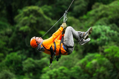 gliding: adult tourist on zipline dressed in orange against green background Stock Photo