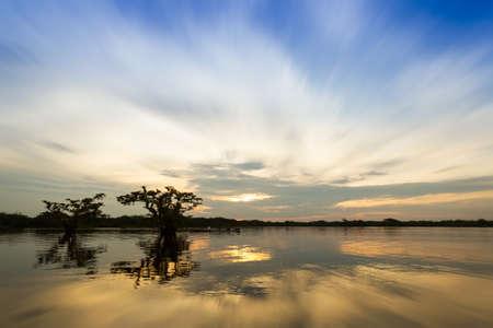 ecuadorian: Scenic wide angle view of lagoon Grande, Cuyabeno National Park, Sucumbios Ecuador, zoom blur Stock Photo