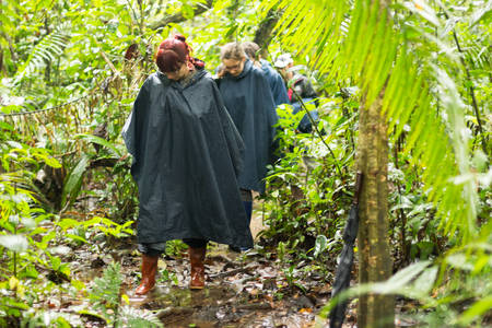 adventurers: Group of tourists in Cuyabeno Wildlife Reserve Ecuador dressed up in rain ponchos