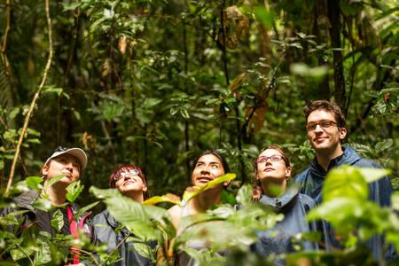 animales de la selva: Grupo de turistas en la selva ecuatoriana en busca de animales en Cuyabeno Reserva de Vida Silvestre, Sucumbíos Ecuador Foto de archivo
