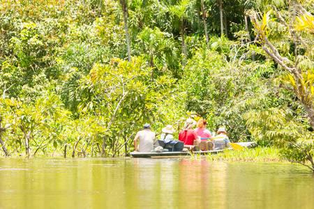 murky: Tourist boat navigating on murky Amazonian water in Cuyabeno Wildlife Reserve