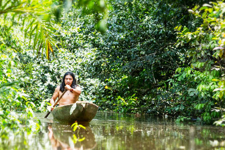 Indigenous adult man on typical wooden canoe choped from a single tree navigating murky waters of Ecuadorian Amazonian primary jungle