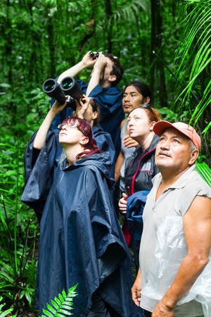 adventurers: Group of tourist in Ecuadorian Amazonian primary jungle looking after wildlife along with native guide