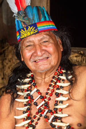 quechua indian: Shaman in Ecuadorian Amazonia during a real ayahuasca ceremony, model released image, as seen in April 2015