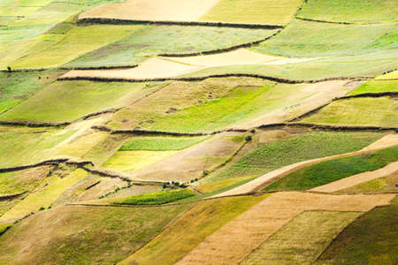 ecuadorian: Agriculture landscape in Ecuadorian Andes