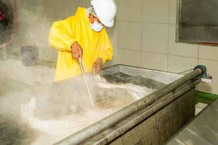 easier: Slaughterhouse butcher submerging a swine carcass in the scalding tub, process that helps in easier hair removal