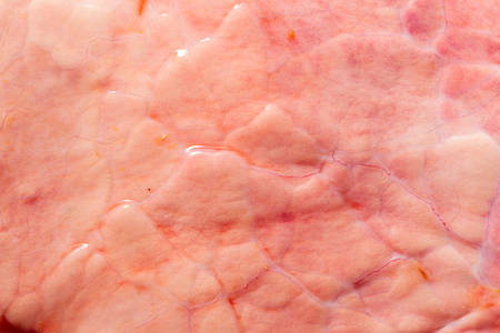 Animal lungs membrane close up shot from less than 10 minutes after the cattle was put to sleep