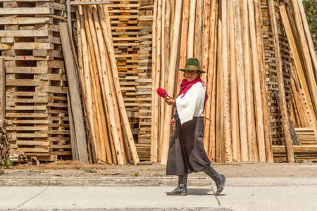 Salasaca, Ecuador - 24 January 2014: Andean Peasant Woman Spinning Wool On The Go In Salasaca On January 24, 2014