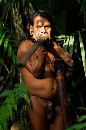 ambient light: Typical Huaorani Hunter Portrait Waorani Reserve Yasuni National Park Ecuador Shoot In The Jungle In Ambient Light Adult Content Stock Photo